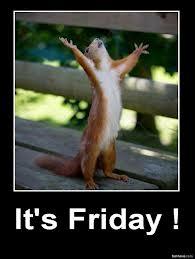 Friday squirrel