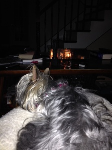 The Mags and I cuddling by the candles...no reading to be done